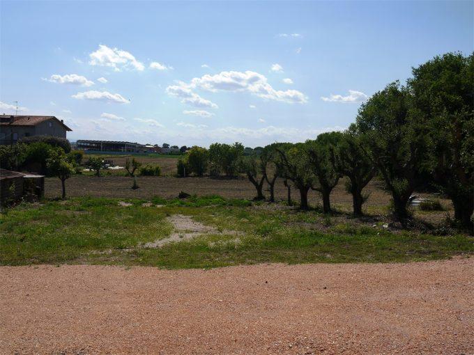 Terreno-Morrovalle-1